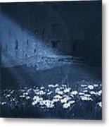 Moon Light Daisies Metal Print