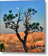 Moon Over Bryce Canyon Metal Print