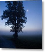 Moonlit Dawn Metal Print