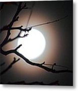 Moonlit Pink Metal Print