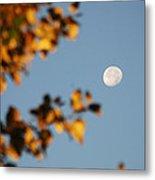Moonset Morning Metal Print