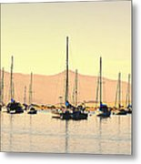 Moorings Metal Print by Fraida Gutovich