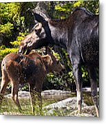 Moose Brunch Metal Print