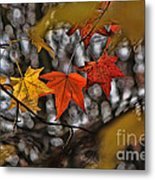 More Autumn Leaves Metal Print