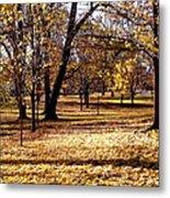More Fall Trees Metal Print