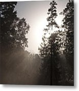 Morning At Valley Forge Metal Print
