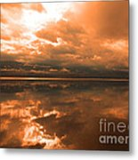 Morning Expressions Metal Print