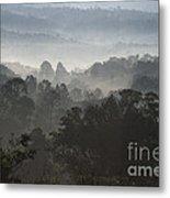 Morning Mist In Panama's Highlands Metal Print