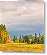Morning On The Dufort Metal Print