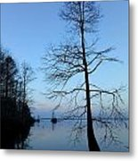 Morning Serenity 2 Metal Print