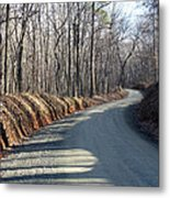 Morning Shadows On The Forest Road Metal Print
