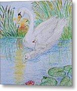 Morning Swim I  Original Colored Pencil Drawing Metal Print