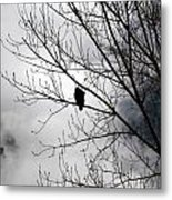 Morning Watch Metal Print