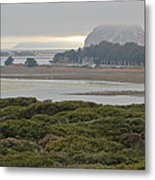 Morro Rock From The Elfin Forest Metal Print