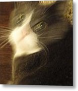 Morty In A Blur Metal Print