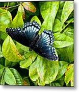 Mosaic Flutterby Metal Print