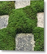 Moss And Stepping Stones Metal Print
