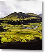 Moss In Iceland Metal Print