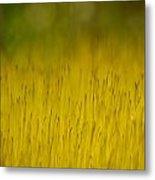 Moss In Yellow Metal Print