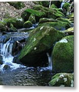 Moss Overflow Metal Print