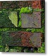 Mossy Brick Wall Metal Print