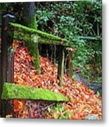 Mossy Fence Metal Print