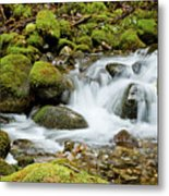 Mossy Greek Metal Print