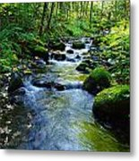 Mossy Rocks And Water   Metal Print