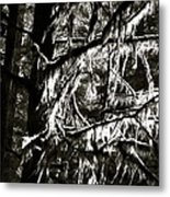Mossy Trees In Black And White 2 Metal Print