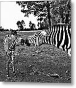 Mother And Child-black And White Metal Print