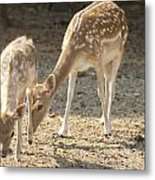Mother And Child V2 Metal Print
