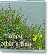 Mother's Day - Wildflowers By The Pond Metal Print