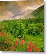 Mount Amery And Fireweed Metal Print