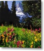Mount Assiniboine Metal Print