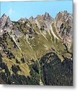 Mount Baker National Forest Metal Print