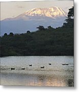 Mount Kilimanjaro Rises Above One Metal Print