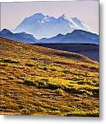 Mount Mckinley, Denali National Park Metal Print