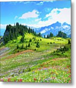 Mount Rainier Summer Colors Metal Print by Feng Wei Photography