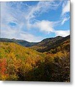 Mountain Foliage And Blue Skies Metal Print
