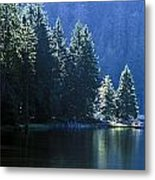 Mountain Lake In Arbersee, Germany Metal Print