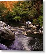Mountain River With Rocks Metal Print by Radoslav Nedelchev