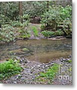 Mountain Road And Footbridge Metal Print