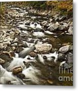 Mountain Stream In Autumn Metal Print