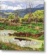 Mountain Valley Marsh - Hdr Metal Print