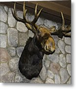 Mounted Moose Metal Print