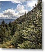 Mt Manfield Vermont 21 Metal Print