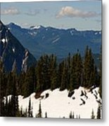 Mt Rainier In June Metal Print