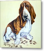 Mucky Pup Metal Print by Andrew Farley