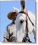 Mules At Benson Mule Day Metal Print