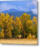 Murmur Of The Cottonwoods Metal Print
